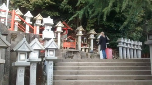 Shigi mountain stone lanterns