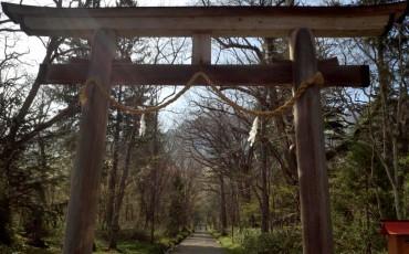 Togakushi torii