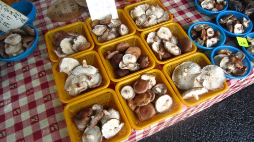 Various mushrooms being sold at the Kochi Sunday market.
