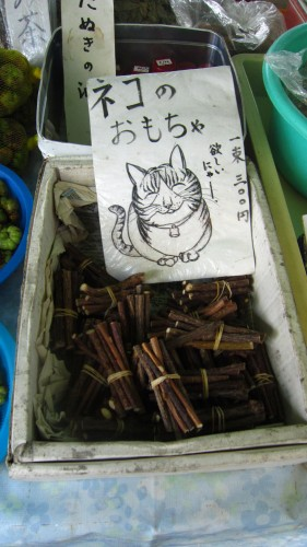 A sign for cat toys that are being sold at the Kochi Sunday market.