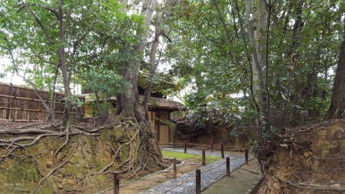 temple in Nara that offers a tea ceremony and Zen garden