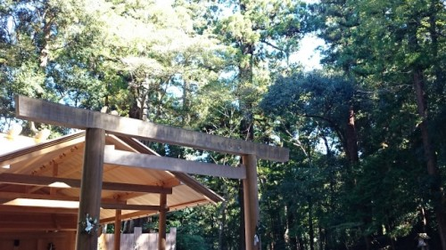 torii gate of shrine among trees in Ise, Mie
