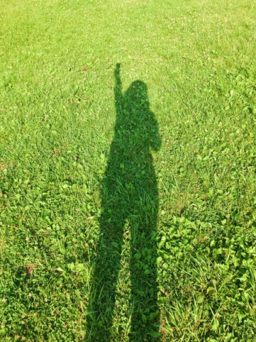 Picture of shadow of a woman rising her fist over grass to show she is genki a Japanese word for good Zen.