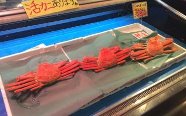sakana machi crab, tsuruga city, Fukui