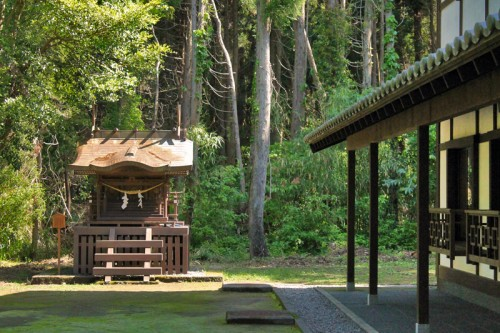 the Chin Yukan kiln is hidden behind a green scenery of trees