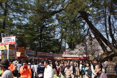 This park is packed with huge mount of people in every hanami seson
