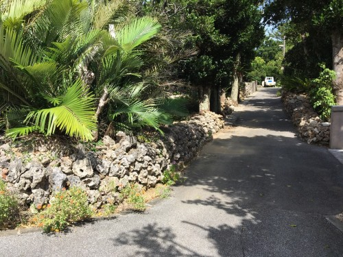 Hateruma Island, on the street