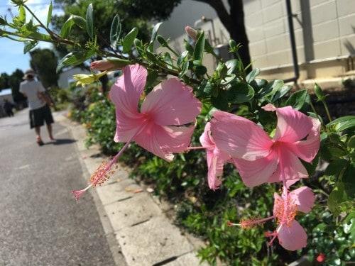 Hateruma Island in Okinawa