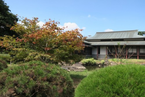 We can also see the traditional japanese garden