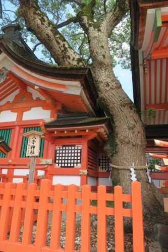 here is a part of yako shrine