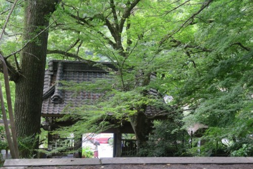 You're going to see soon the huki-ji temple