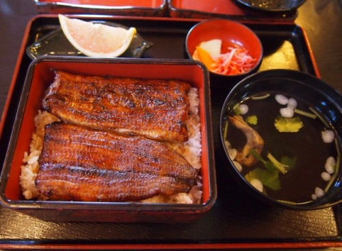 This is unagi don, a bowl of rice topped with eel marinated in a delicious sauce