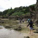Okinawa's Ishigaki Island: A Friendly Hostel, Stargazing and Tropical Fish