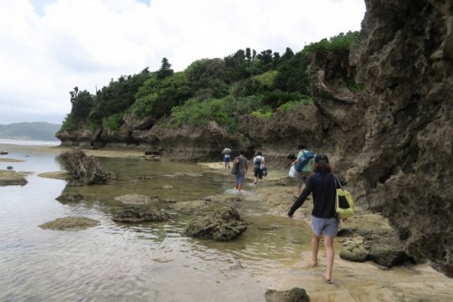 Okinawa Ishigaki Island Vacation Beach Ocean Tropical Stargazing Kayaking Festival Hostel Japan