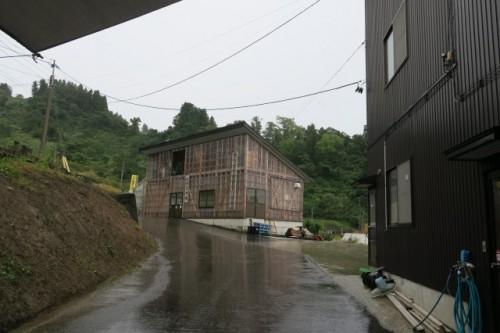 Carp farm in the pond
