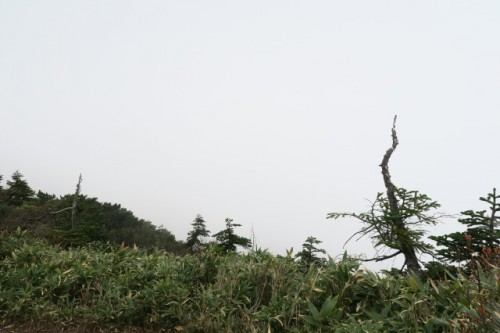 On a hiking trail to Mount Hotaka