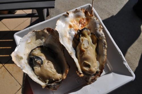 Hiroshima Miyajima oysters