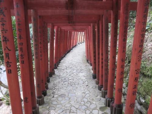 Torii gates, Yutoku Inari Shrine