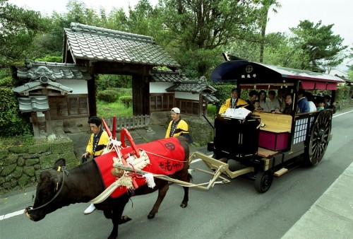 Ox carriage cars in Izumi