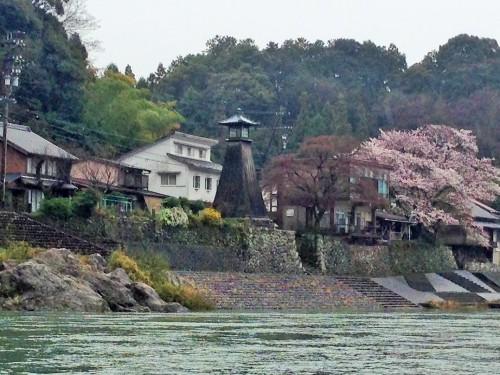 The Kawaminato lighthouse with cherry blossom trees along Nagara river