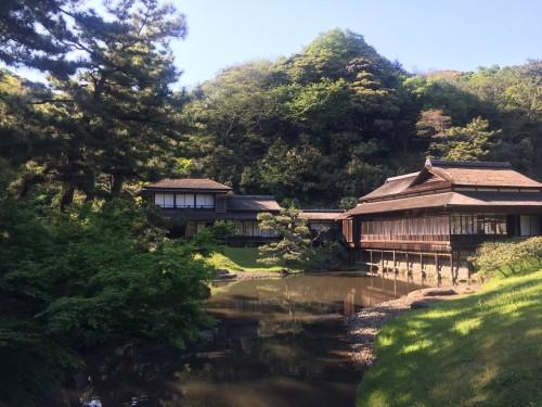 Take a Walk to the Tea House at Sankeien