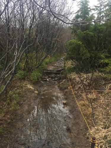 The trekking route to Mount Horai near Mount Azuma, Fukushima, Japan.