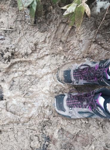 Waterproof hiking shoes