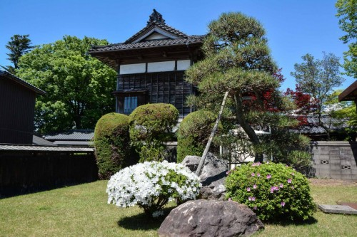 Azaeleas and Traditional Gardens in Murakami