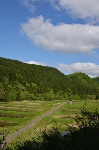 Auf zum Reisfeld zum pflanzen Takane, Niigata, Japan