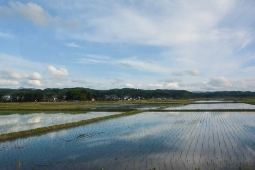 Busfahrt mit Blick auf Reisfelder und Berge in Murakami, Niigata, Japan