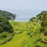 Stunning Terraced Rice Fields in Kyushu: Hamanoura and Oura in Saga, Kyushu