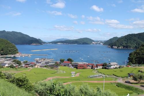 Terraced rice field, Fukui prefecture