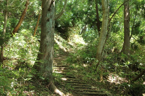 The climbing path of Mount Aoba, Fukui prefecture