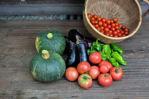 My harvest of fresh vegetables in Oita, Japan
