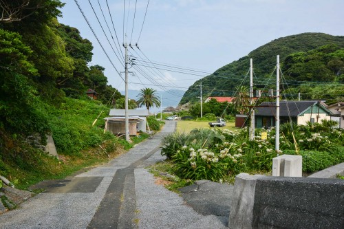 Road to Nowhere on Cat island Fukashima, Oita prefecture, Kyushu.