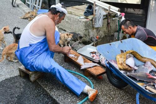 Fishermen on Cat island Fukashima, Oita prefecture, Kyushu.