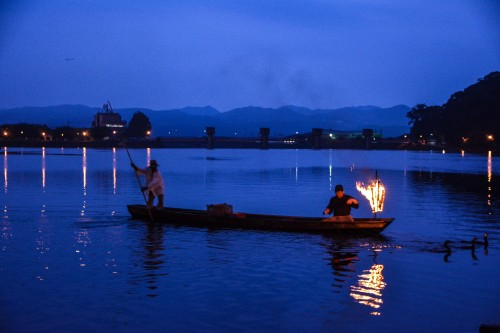 Cormorant fishing is a 400-year-old tradition in Hita city, Oita prefecture, Japan.