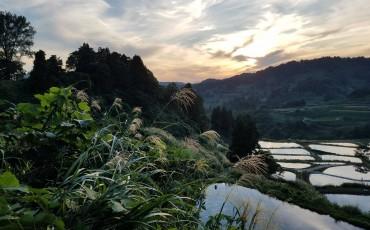 Yamakoshi village, Niigata, Japan.