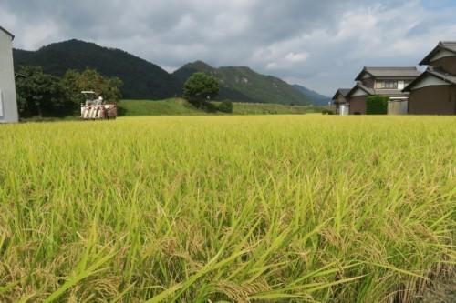 Rural Japan at Mino city, Gifu, Japan