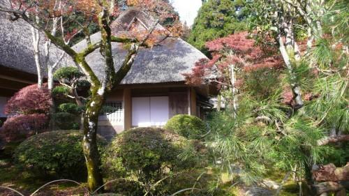 Discover Japanese Garden in Autumn at Kunenan