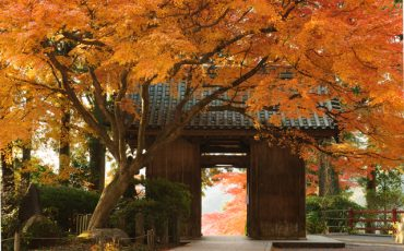 Daikozenji Temple (大興善寺) in Saga Prefecture, established in the early 9th century