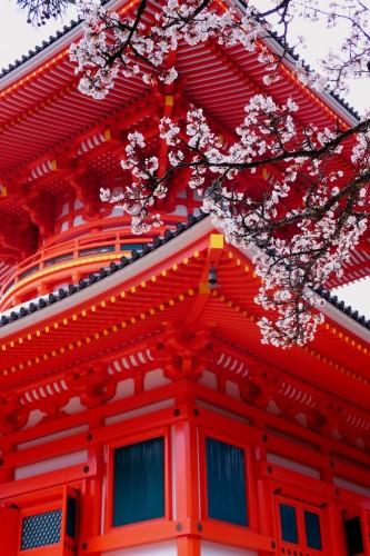 Kongobuji Temple in Mount Koya, UNESCO World Heritage in Japan