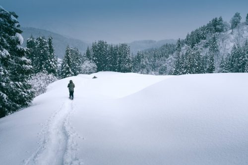 Winter Snowshoe Trekking in Takane Village in Niigata Prefecture