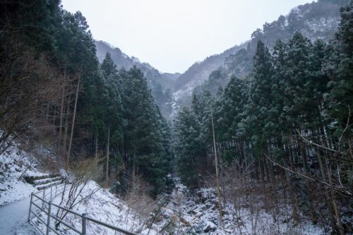 Shiraino Waterfall, the ice cascade in winter, Toon City, Ehime Prefecture.