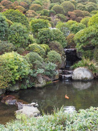 Garden at Nezu Shrine at Yanesen area  in Tokyo, Japan.