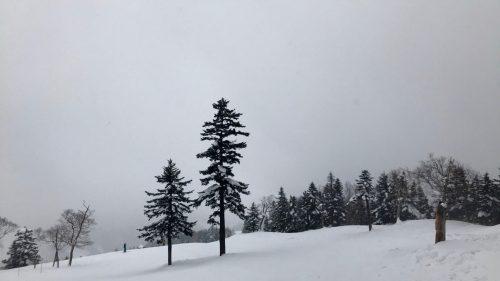 Enjoy Skiing at Manza Ski Resort, close to Tokyo, Japan.