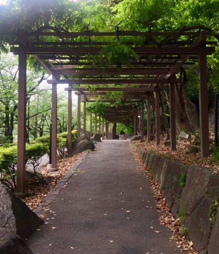 Kagurazaka Neighborhood Guide Edogawa Park Walking Greenery Tokyo Japan