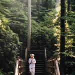 Summer in Toon: Mountain Trekking and Nagashi Somen Tasting