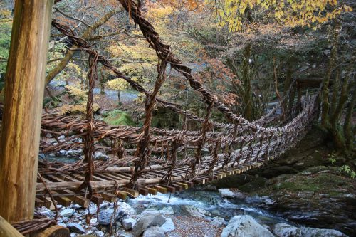 Ivy Bridge at Iya Valley, Tokushima.