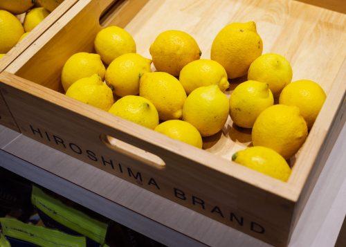 Setouchi lemons at Hiroshima Tau antenna shop